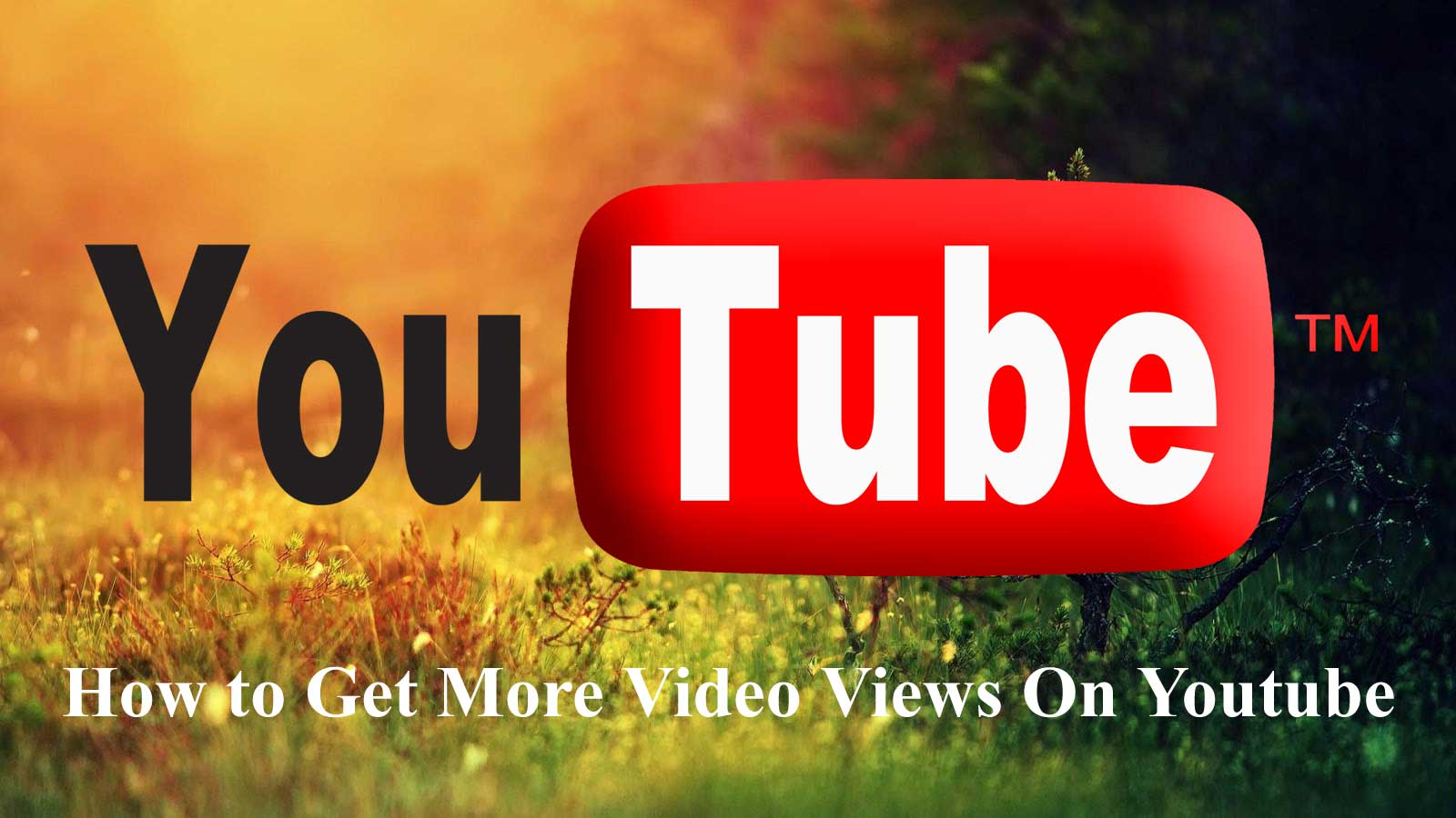 how to increase views on youtube hack